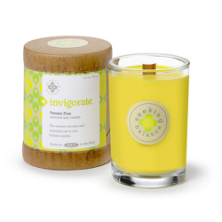 Seeking Balance INVIGORATE Holistic Candle from Lewis Florist in Grayslake, IL