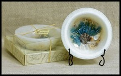 WHITE SAND & SEA SALT REGULAR WAX POTTERY from Lewis Florist in Grayslake, IL