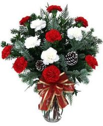 Christmas Carnations from Lewis Florist in Grayslake, IL