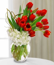 Classy Red and White from Lewis Florist in Grayslake, IL