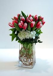 Spring Tulips and Hydrangea from Lewis Florist in Grayslake, IL