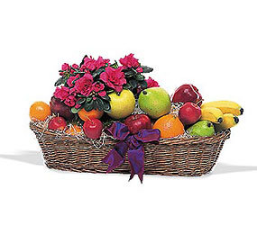 Plant and Fruit Basket from Lewis Florist in Grayslake, IL