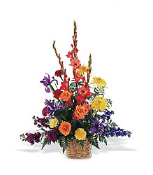 Warm & Comfort rainbow colors from Lewis Florist in Grayslake, IL