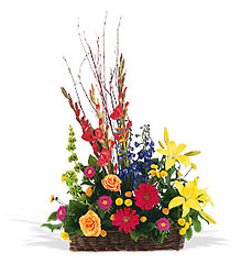 Sunshine Basket from Lewis Florist in Grayslake, IL