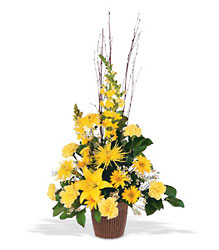 Brighter Blessings Arrangement from Lewis Florist in Grayslake, IL