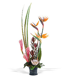 Tropical Paradise Arrangement from Lewis Florist in Grayslake, IL