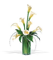 Graceful Callas from Lewis Florist in Grayslake, IL