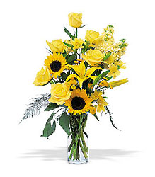 Blazing Sunshine from Lewis Florist in Grayslake, IL