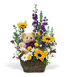 New Baby Basket & Bear from Lewis Florist in Grayslake, IL