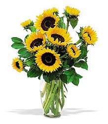 Shining Summer Sunflowers from Lewis Florist in Grayslake, IL