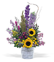 Country Days from Lewis Florist in Grayslake, IL