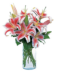 Lovely Lilies from Lewis Florist in Grayslake, IL