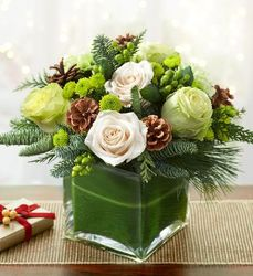 Fresh Winter Greens from Lewis Florist in Grayslake, IL